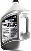 QUICKSILVER Premium Plus 2-Cycle Outboard Oil TC-W3